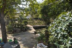 Un giardino dei fiori e degli agricoltori Fotografia Stock Libera da Diritti