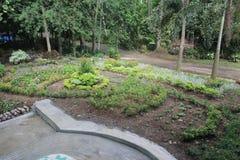 Un giardino molto fresco fotografie stock libere da diritti