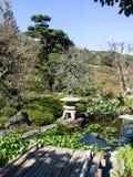 Un giardino, una pianta, un oggetto e uno stagno giapponesi immagine stock libera da diritti