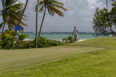 Un giocatore di golf femminile che prepara un colpo di chip Fotografia Stock