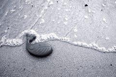 Un giocattolo di plastica della balena Fotografia Stock Libera da Diritti