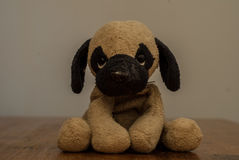 Un giocattolo sveglio del cane Immagine Stock