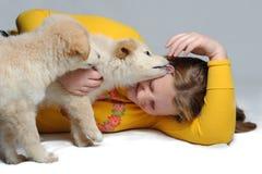 Un gioco dei due cuccioli con la ragazza Immagine Stock