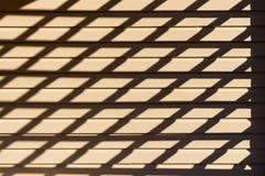 Un gioco delle ombre Fotografia Stock Libera da Diritti
