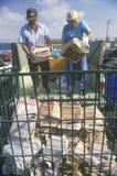 Un giornale di lancio delle coppie impacchetta in un recipiente da riciclare a Santa Monica Community Center, CA Immagini Stock