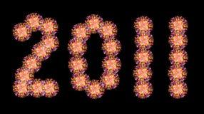 Un giorno di 2011 nuovo anno Immagine Stock
