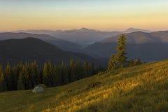 Un giorno di estate soleggiato, la vista dal plateau alla foresta e le montagne Cielo blu, lotti di erba verde ed alberi Fotografie Stock