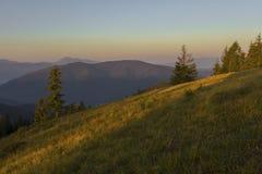 Un giorno di estate soleggiato, la vista dal plateau alla foresta e le montagne Cielo blu, lotti di erba verde ed alberi Immagine Stock