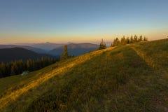 Un giorno di estate soleggiato, la vista dal plateau alla foresta e le montagne Cielo blu, lotti di erba verde ed alberi Fotografia Stock Libera da Diritti