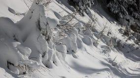 Un giorno di inverno nelle alpi svizzere Immagine Stock Libera da Diritti