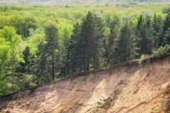 Un giorno di molla caldo nella valle della foresta del fiume russo con un pendio sabbioso ripido Paesaggio soleggiato Immagine Stock Libera da Diritti