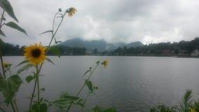 Un giorno di pace nel lago Fotografia Stock