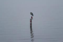 Un giorno nebbioso sul lago Immagine Stock