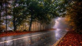 Un giorno piovoso Fotografia Stock