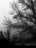 Un giorno tempestoso Fotografia Stock
