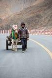 Un giovane agricoltore adulto con il suo cavallo Immagini Stock Libere da Diritti