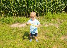Un giovane agricoltore che ispeziona il suo raccolto ad un'azienda agricola in Ontario Fotografia Stock