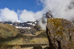 Un giovane che si siede su una roccia con una montagna nella parte posteriore Immagini Stock