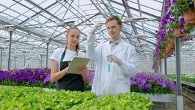 Un giovane e una donna in camice e grembiuli, scienziati, biologi o agronomi neri esaminano ed analizzano i fiori stock footage