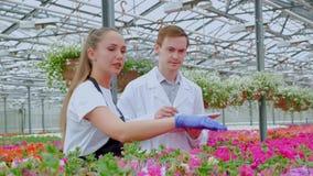 Un giovane e una donna in camice e grembiuli, scienziati, biologi o agronomi neri esaminano ed analizzano i fiori video d archivio