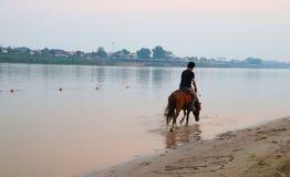 Un giovane gode di di guidare sul cavallo sulla spiaggia lungo la riva del fiume fotografie stock libere da diritti