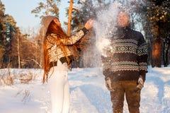 Un giovane uomo bello dell'aspetto europeo e una giovane ragazza asiatica in un parco sulla natura nell'inverno immagine stock libera da diritti