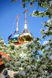 Un Golden Dome con un incrocio circondato a primavera fiorisce Fotografia Stock Libera da Diritti
