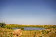 Un grand étang d'eau entouré par le pâturage vert Photos libres de droits