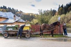 Un grand chien brun clair se trouve au sol près de sa maison et le garde Photo libre de droits
