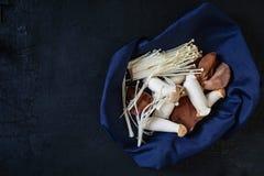 Un grand choix de champignons dans le tissu photos stock