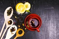 Un grand choix de thés, d'épices et de fruits sur le fond texturisé foncé Photographie stock