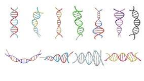 Un grand ensemble de belles structures tordues scientifiques médicales multicolores des spirales des modèles abstraits des gènes  illustration libre de droits