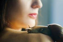Un grand escargot Akhatin rampe sur l'épaule femelle Procédure de Cosmetological Concept de station thermale photos stock