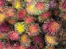 Un grand groupe de fruit coloré de ramboutan Photographie stock libre de droits