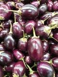 Un grand groupe de petites aubergines indiennes pourpres Photographie stock