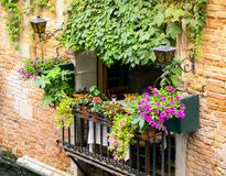 Un grand jardin de balcon Photographie stock