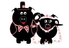UN GRAND MARIAGE PORCIN DE FAT Images libres de droits
