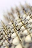 Un grand mur des punaises dans un boîtier blanc - angle tordu #1 Image stock