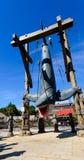 Un grand requin blanc Images libres de droits