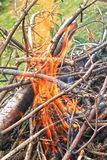 Un grande fuoco di picnic nel legno fotografia stock