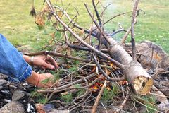 Un grande fuoco di picnic nel legno fotografie stock