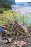 Un grande fuoco di picnic nel legno fotografie stock libere da diritti