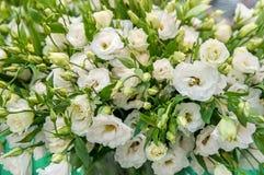 Un grande mazzo dei alstroemerias bianchi in un negozio di fiore è venduto sotto il nome di contenitore di regalo Il mercato del  Immagine Stock Libera da Diritti