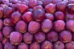 Un grande mucchio delle mele croccanti dolci e saporite di rossi carmini - autunno b Fotografia Stock Libera da Diritti