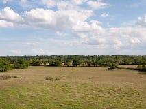 Un grande pezzo aperto del paesaggio erboso della campagna con gli alberi in Fotografia Stock