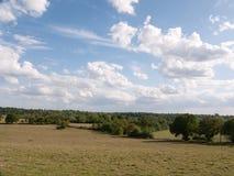 Un grande pezzo aperto del paesaggio erboso della campagna con gli alberi in Fotografie Stock Libere da Diritti