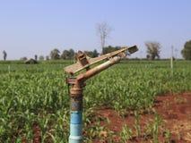 Un grande spruzzatore di agricoltura che bagna un campo di grano recentemente coltivare Immagini Stock