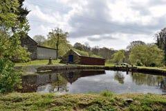 Un grande stagno del giardino circondato dal ` s dell'albero e dal ` s dell'arbusto con un cielo blu e le nuvole Galles contenuto fotografia stock