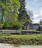 Un grande stagno del giardino circondato dal ` s dell'albero e dal ` s dell'arbusto con un cielo blu e le nuvole Galles contenuto fotografia stock libera da diritti