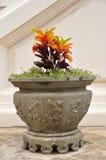 Un grande vaso da fiori cinese in tempio della Tailandia. Fotografia Stock Libera da Diritti